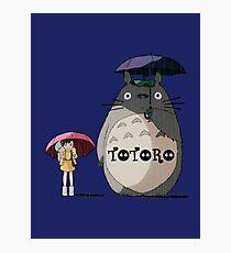 Totoro, Satsuki and Mei Photographic Print