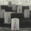 Freedom isn't really Free.... by Grinch/R. Pross