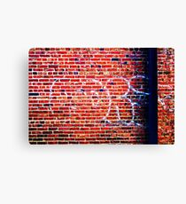 Graffiti 23 Canvas Print