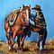 HORSES & RIDERS ♦ June 2011
