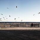 Brighton Esplanade by Talya Chalef
