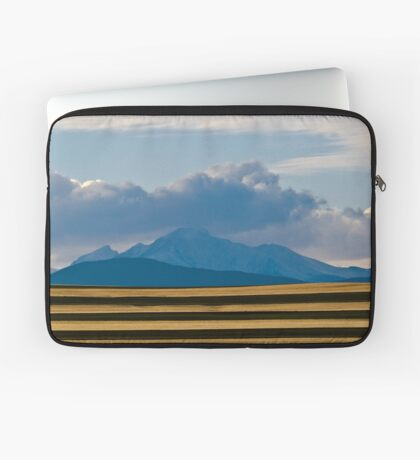 Waiting For Winter Laptop Sleeve