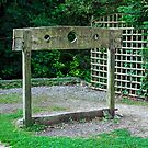 The Pillory In Shanklin Old Village by Rod Johnson