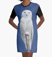 Dreams DO come true Graphic T-Shirt Dress