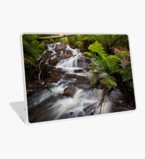Cascades Laptop Skin