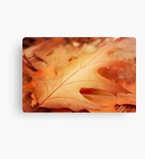 AFE Autumn Leaves Canvas Print
