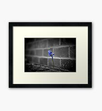 Nature Prevailing Framed Print