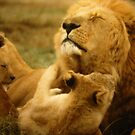 """""""Dad Time"""" by Susan  Bergstrom"""