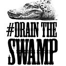 Drain The Swamp by poise