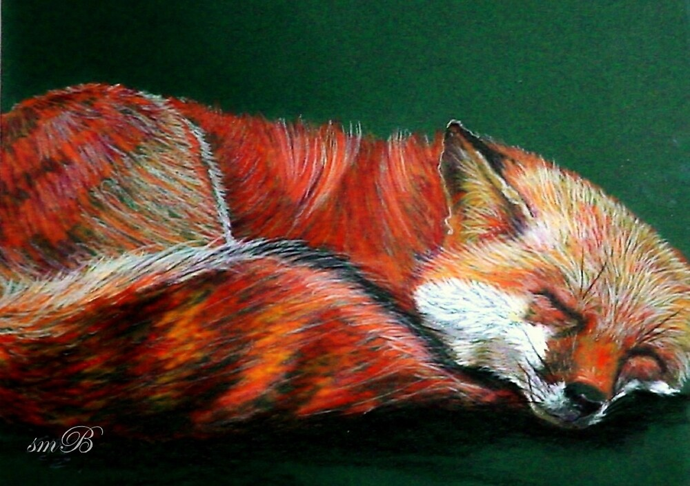 """""""Don't Forget To Take Naps"""" by Susan McKenzie Bergstrom"""