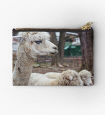 Timid Studio Pouch