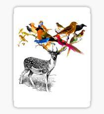 DEER BIRDY Sticker