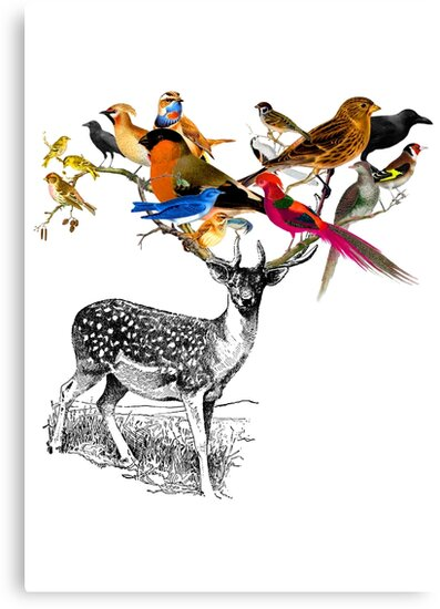 DEER BIRDY by TheLoveShop