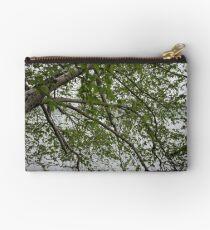 Birch Tree Waterscape 3129 Studio Pouch