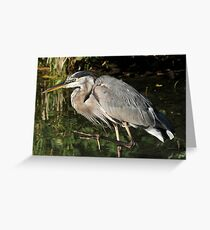 March of the heron Greeting Card
