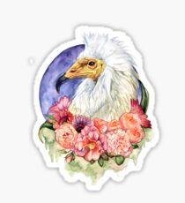 Egyptian Vulture Sticker