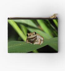 Hello Frog Zipper Pouch