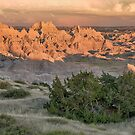 Badlands Scene by April Koehler