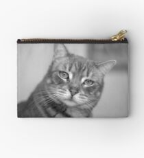 Happy Hunter House Cat  Studio Pouch