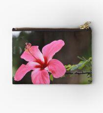 Hibiscus rosa-senensis Linn. Studio Pouch