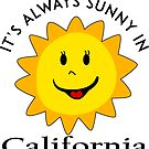 SUNSHINE SMILEY CALIFORNIA FACE CUTE HAND DRAWN SMILE POPULAR STICKERS TOP DECAL SUN by MyHandmadeSigns