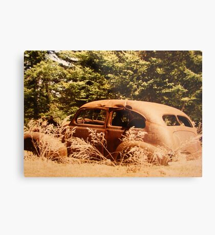 """""""Out To Pasture"""" Metal Print"""