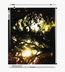 Where the Fairies Dwell iPad Case/Skin