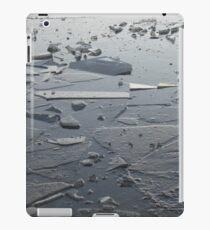 Frozen Pond iPad Case/Skin