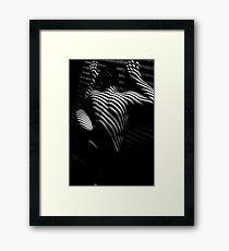 Edward V Framed Print