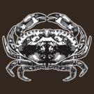 Rorshach Crab  by ZugArt