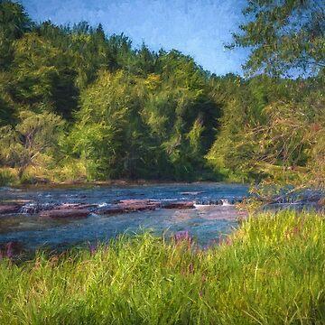 Flat Rock Rapids by Jessticulate