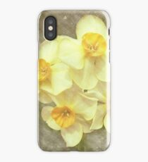 NARCISSUS BEAUTIFUL EYES (Daffodils) iPhone Case/Skin