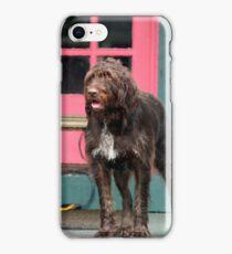 Shag Dog Blues iPhone Case/Skin