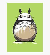 Totoro Painting Panda Photographic Print