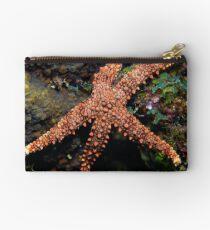 Starfish in the Garden Studio Pouch