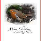 Christmas Robin by Steve Purnell