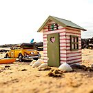 Miniature day at the beach by Gary Power