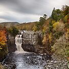 Autumnal High Force by David Lewins