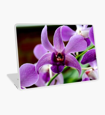 Orchid 48 Laptop Skin