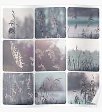 Collage of winter images  Poster