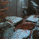 Gothic Rocks. In Mysterious Woods by JennyRainbow