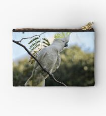 Sulfur crested cockatoo Studio Pouch