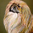 Demitri, Pet Portrait Of A Pekingese by Susan McKenzie Bergstrom