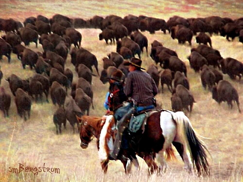 Driving The Herd by Susan McKenzie Bergstrom