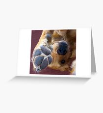 Please, No More Photographs! Greeting Card