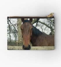 """Why the long Face"" Studio Pouch"