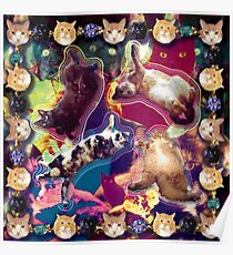 Jake's Cat Heaven Poster