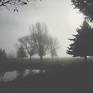 Silent Nook by Stefan Albani