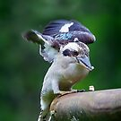 Burra Eating... by Tracie Louise