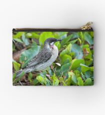 Red Wattle Bird and Ground Cover Studio Pouch